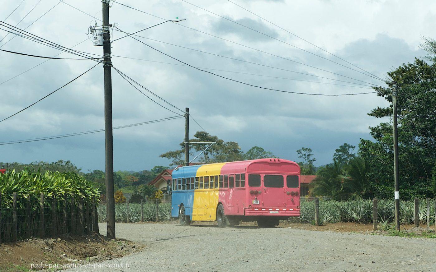 Piste vers Boca Tapada - Bus