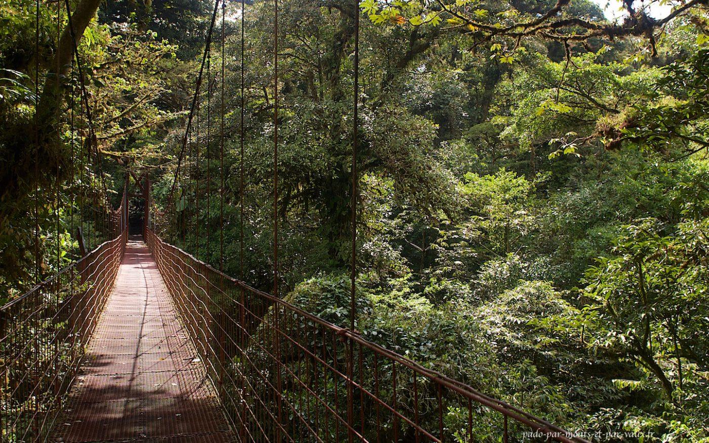 Monteverde - pont