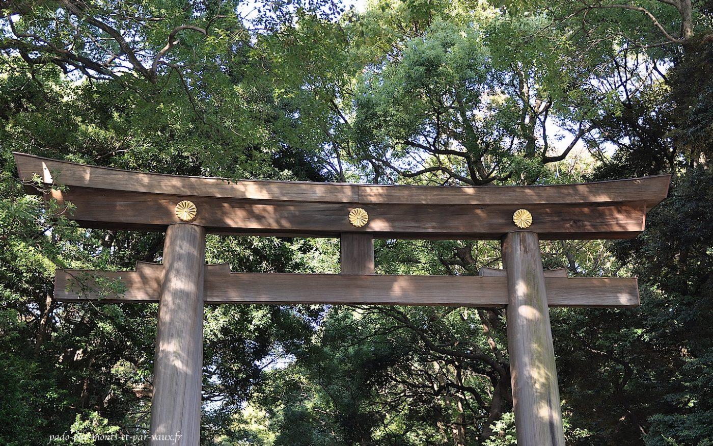 Torii du temple Meiji-Jingu