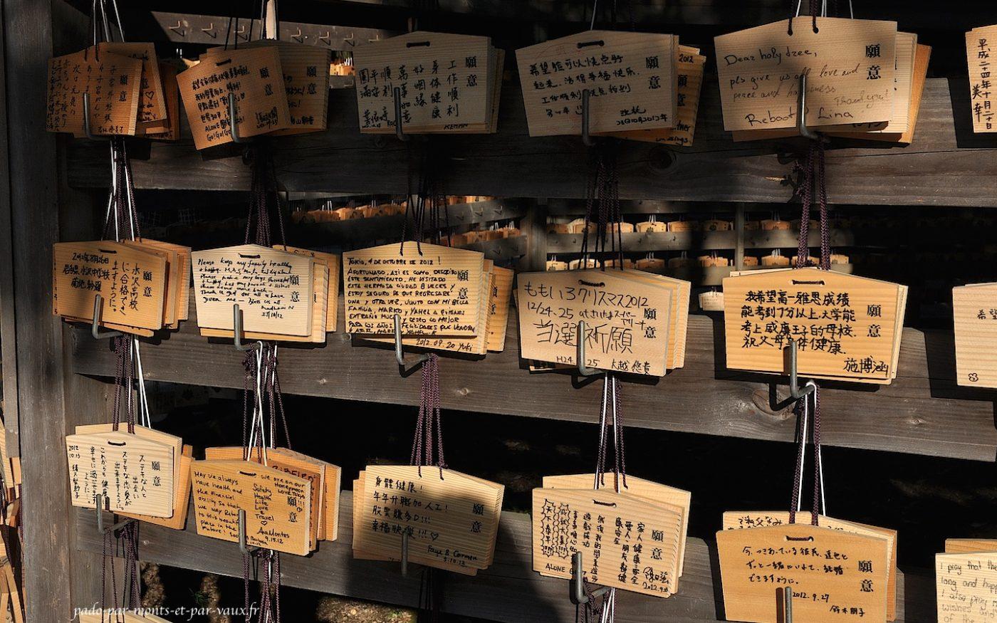 Temple Meiji-Jingu - Emas
