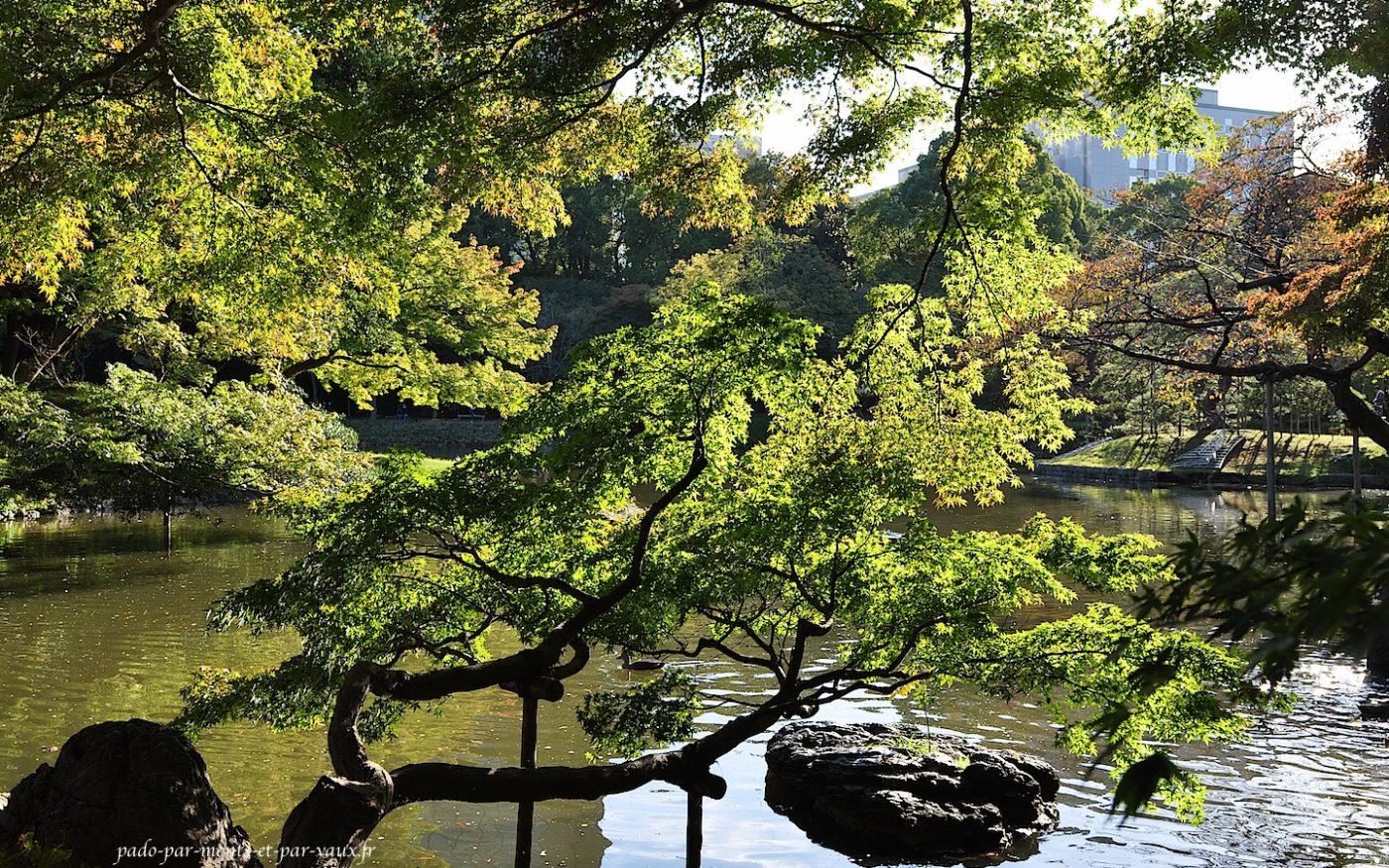jardins Koishikawa Koraku-en