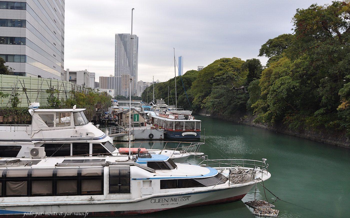 Tsukijii