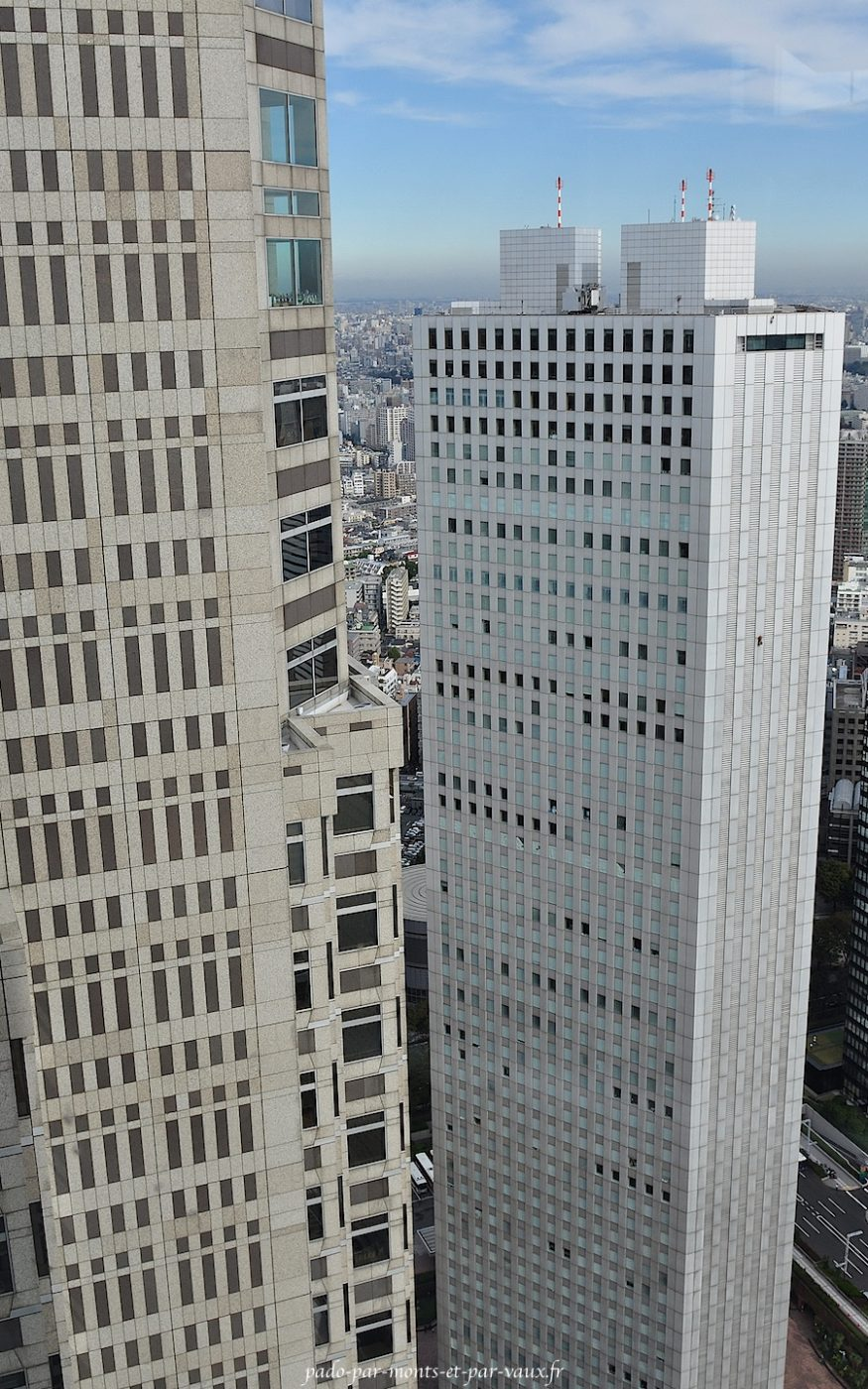 Shinjuku - Vue depuis la mairie