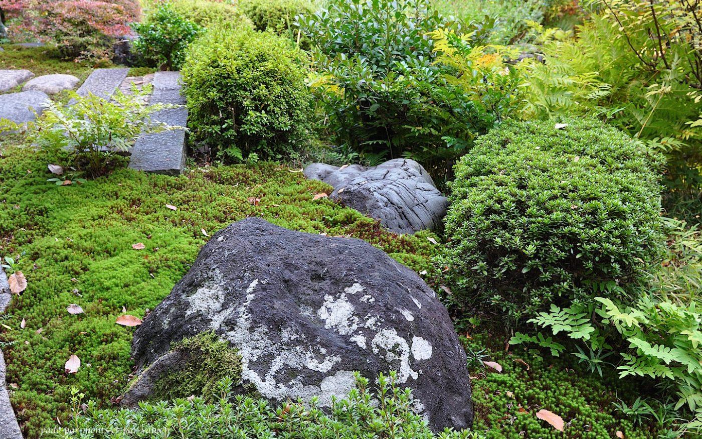 Jardins du musée Nezu
