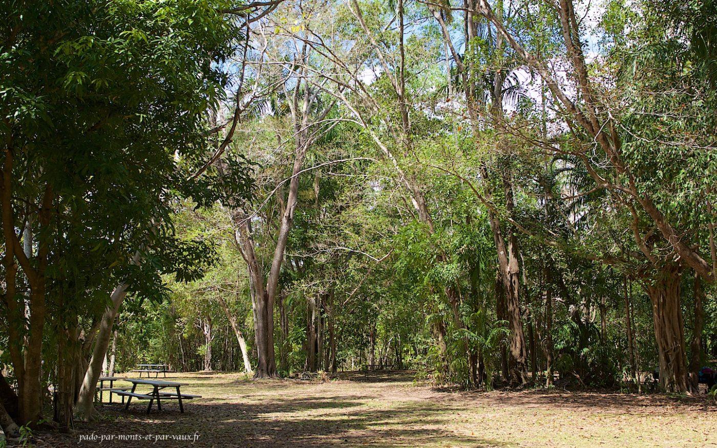 Aire de pique nique du Berry springs nature park