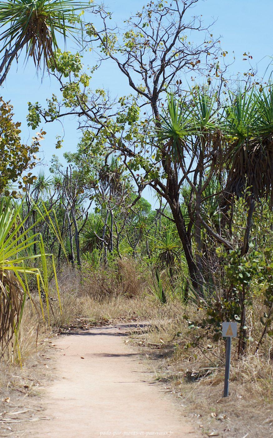 Mamulaka walk
