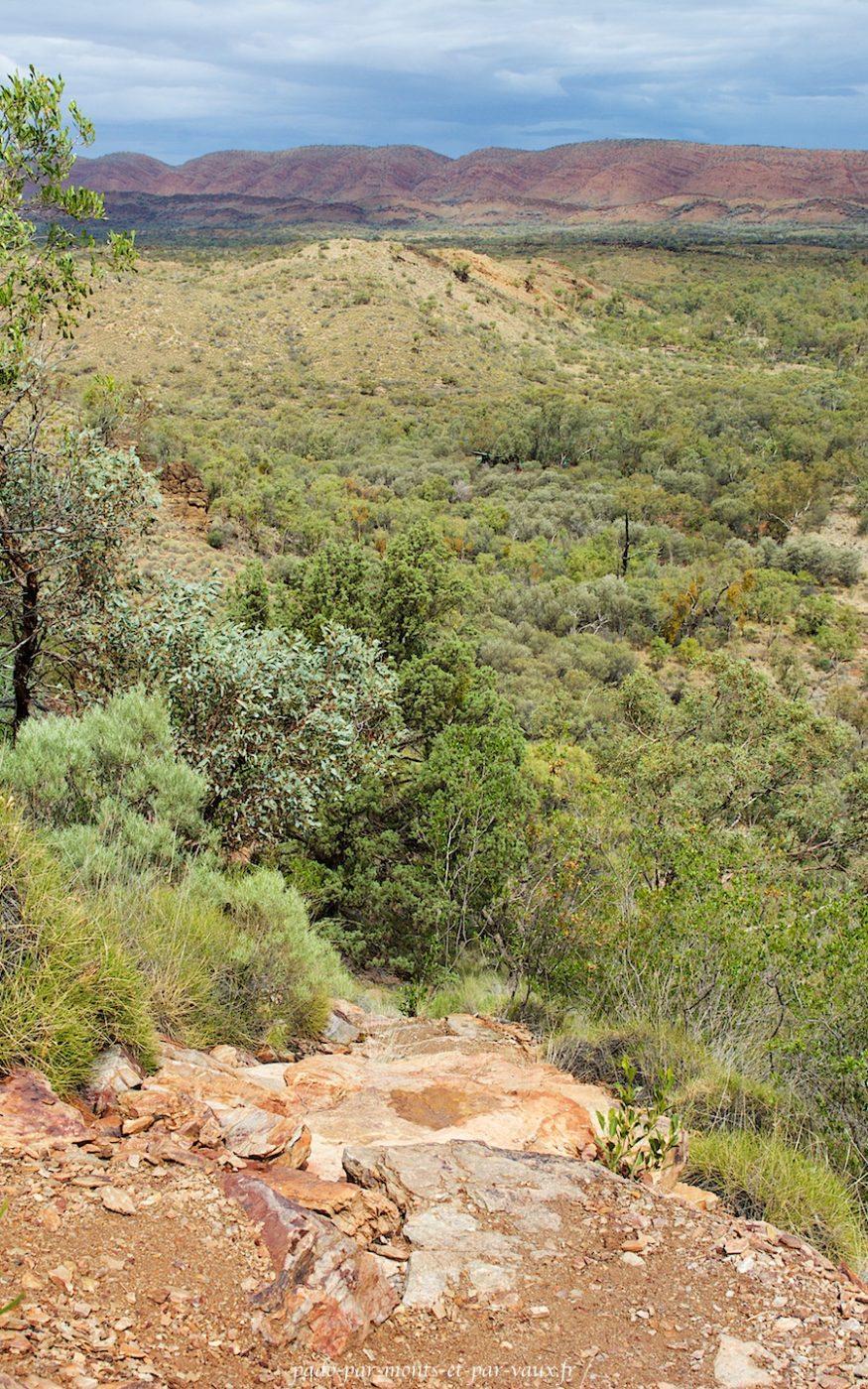 Serpentine gorge - lookout