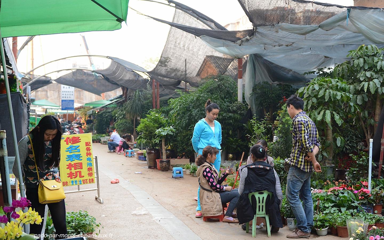 Kunming marché aux fleurs