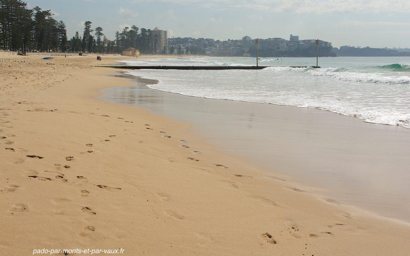 Manly - plages côté océan