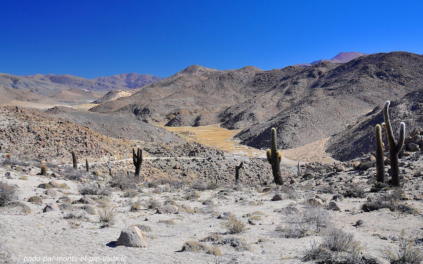 Santa Rosa de Tastil - site pré inca
