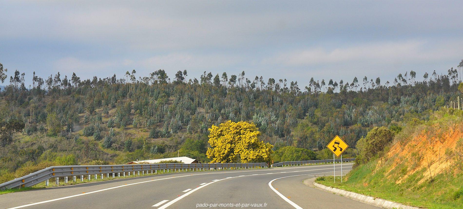 route de Valparaiso