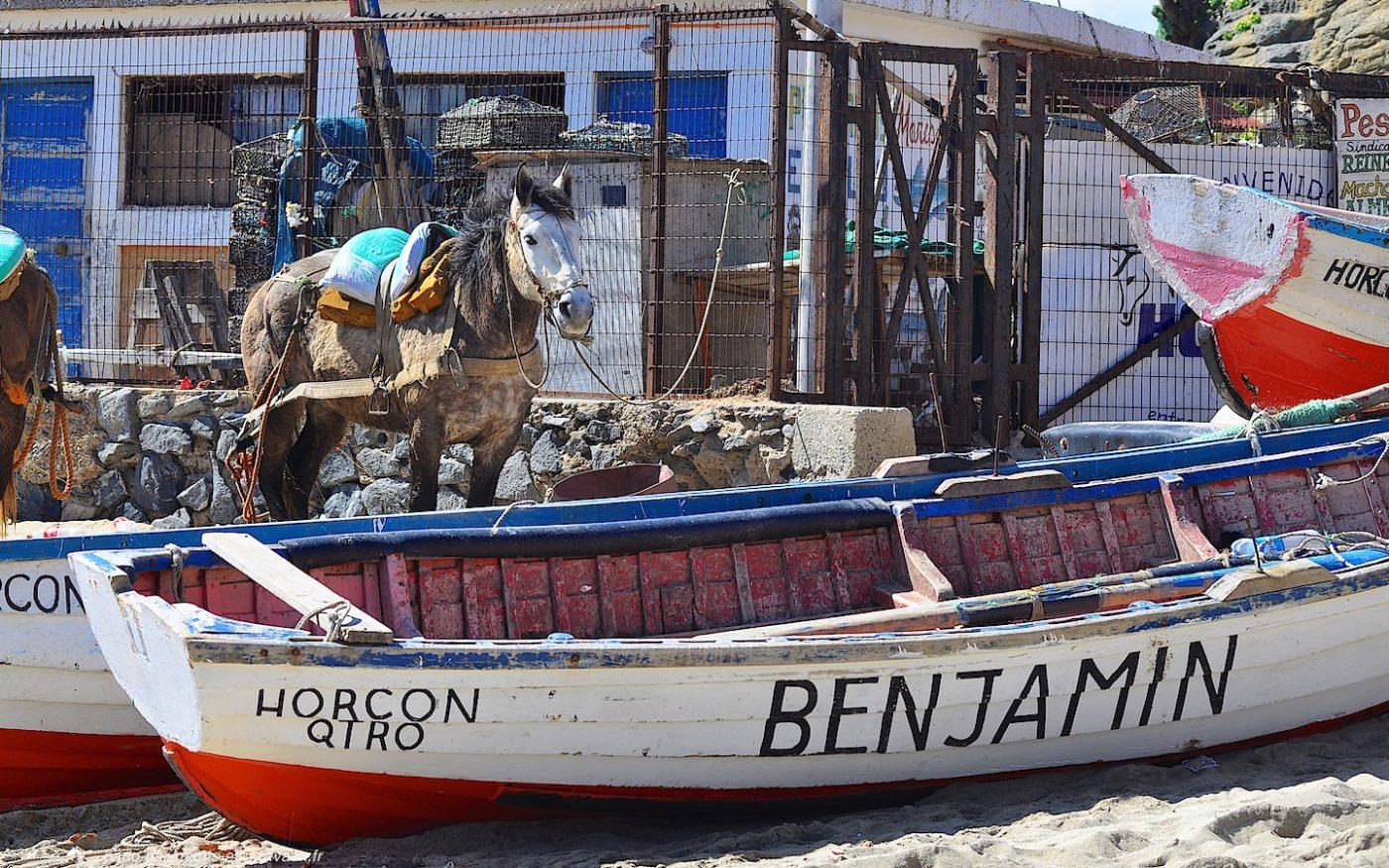 Horcon pêcheurs
