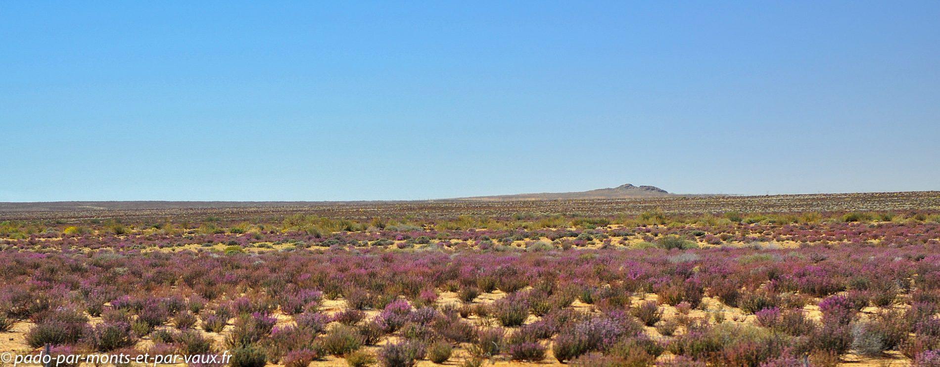 N7 en direction de la Namibie
