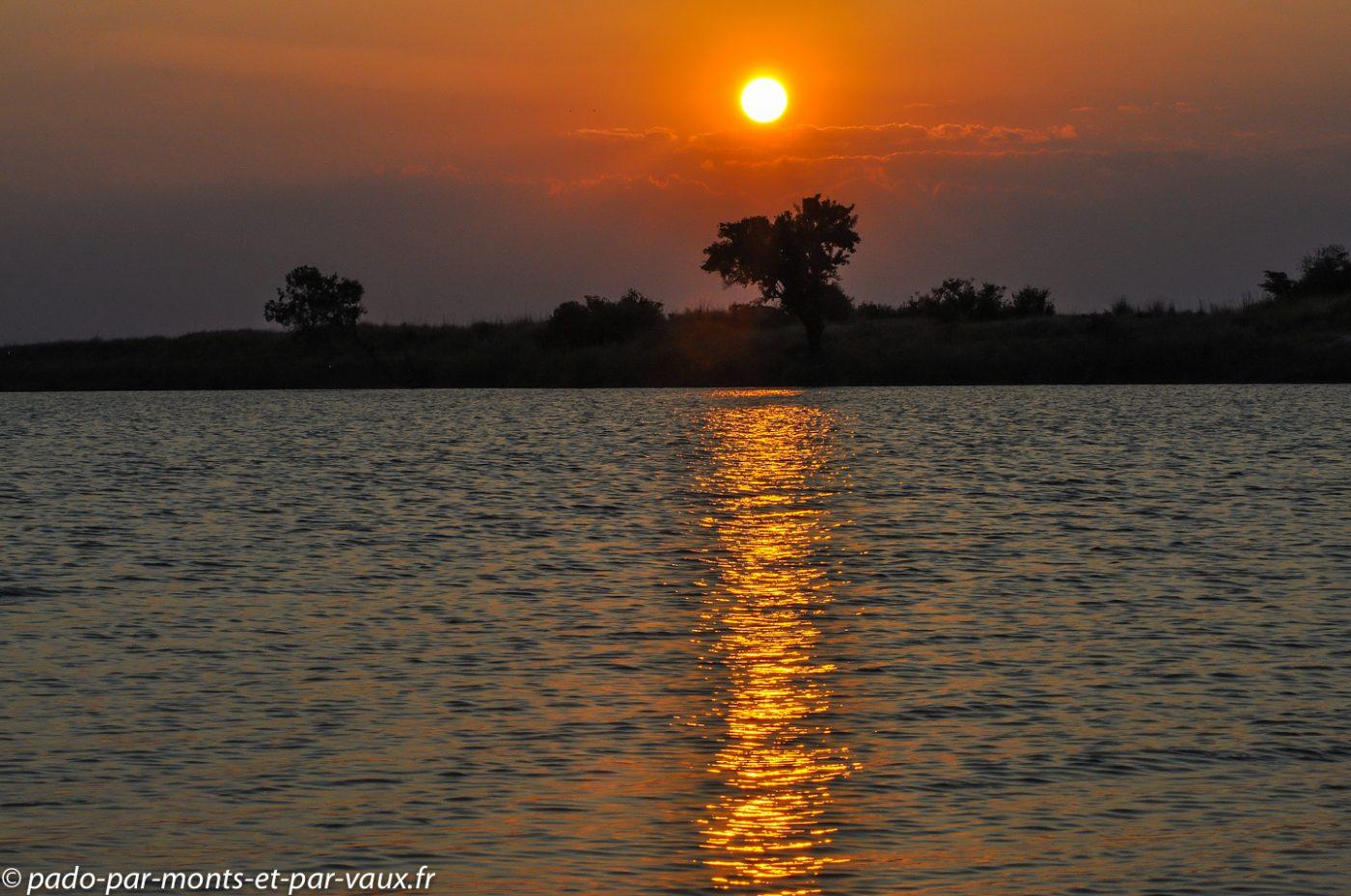 Rivière Chobe