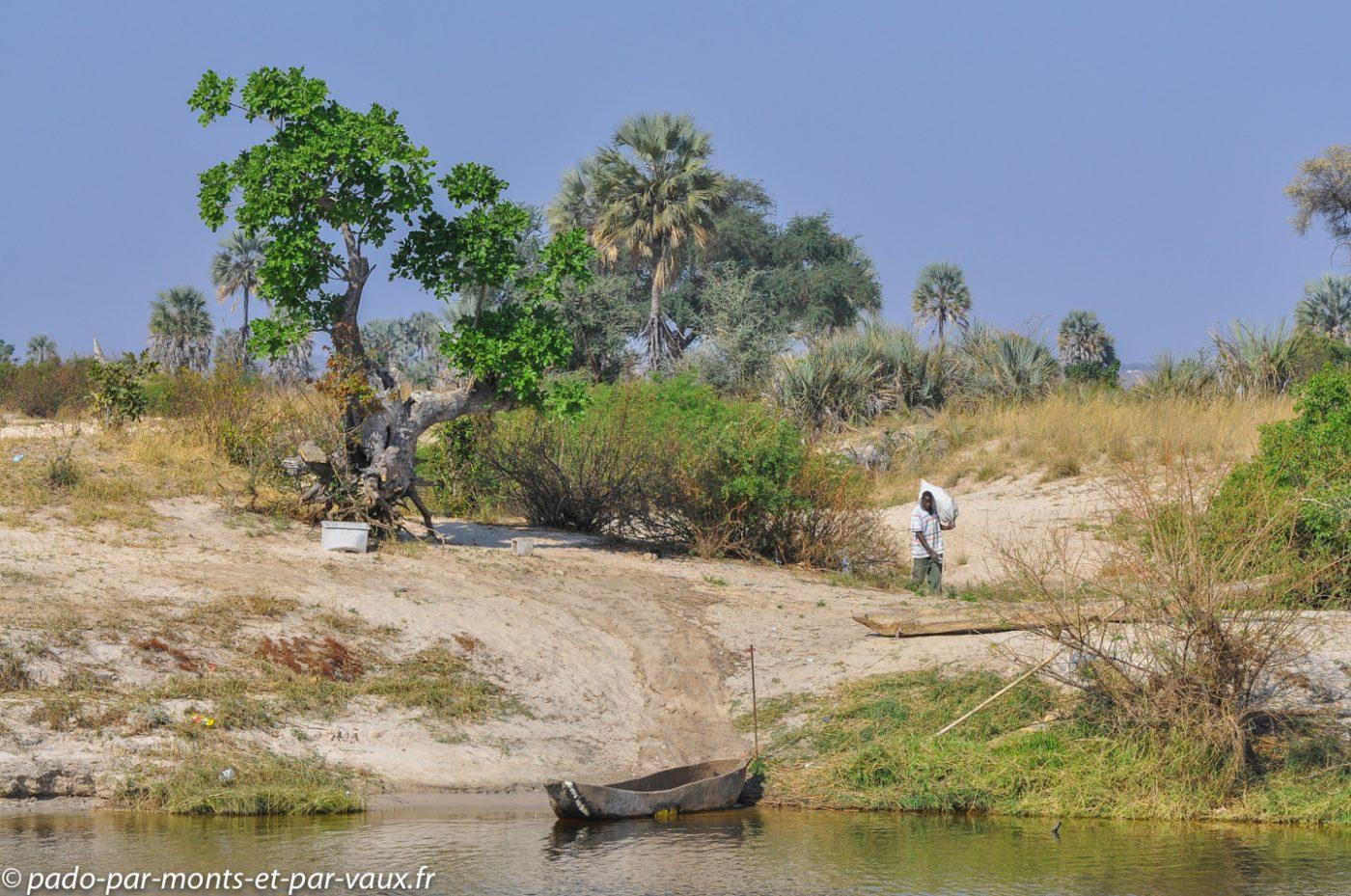Rivière Chobe - rive namibienne