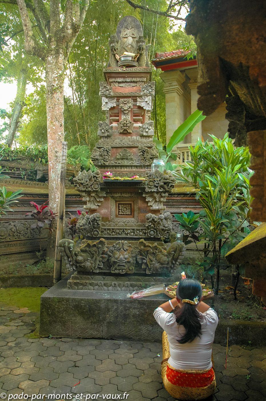 Musée Neka - Ubud