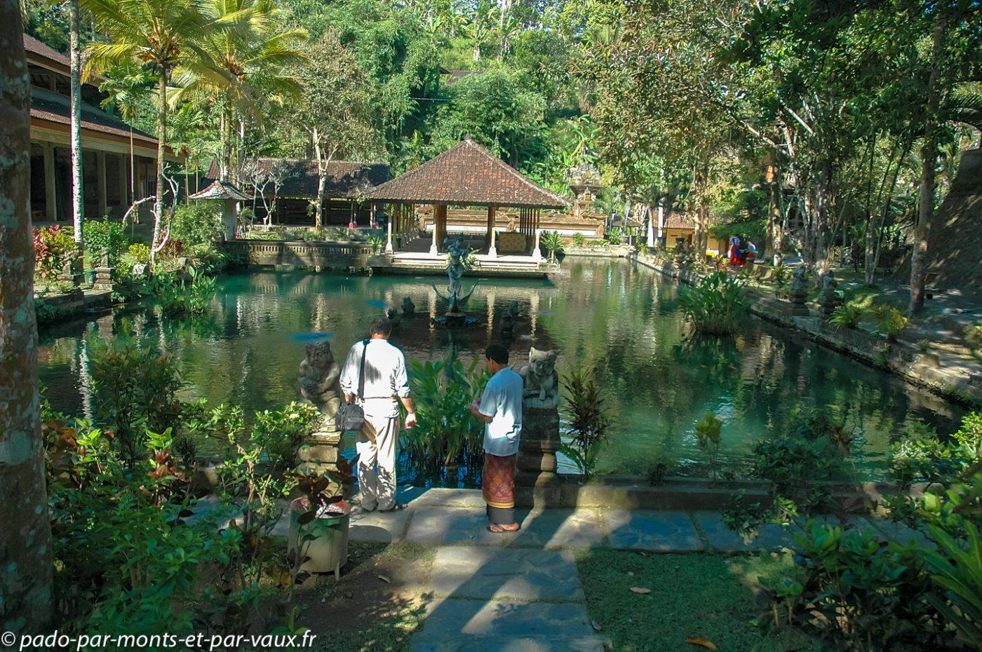 Bassins sacrés de Sebatu