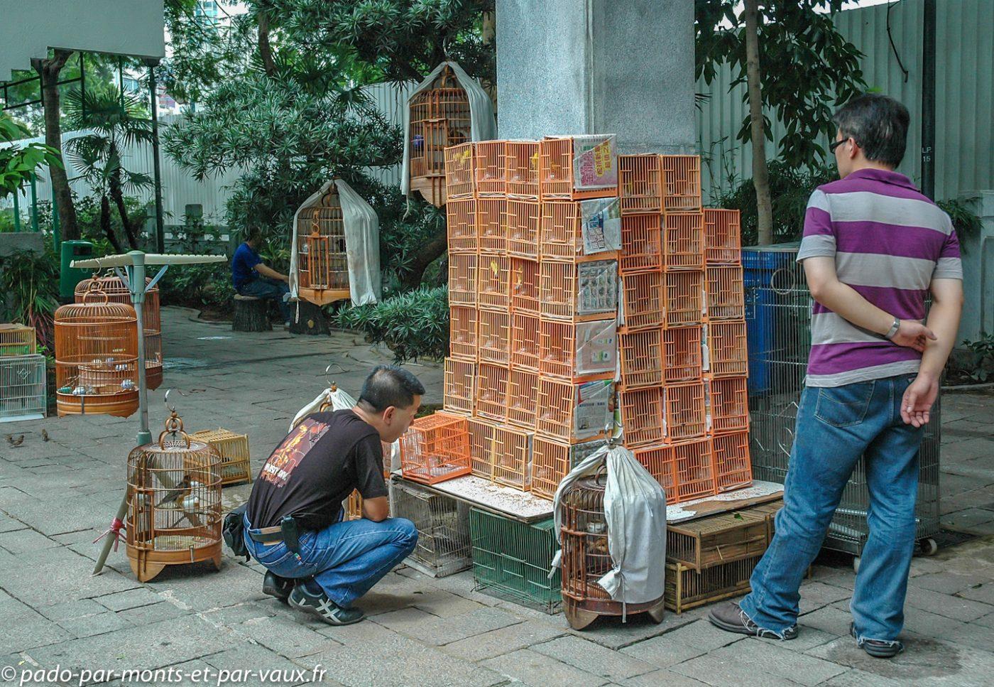 Kowloon marché aux oiseaux
