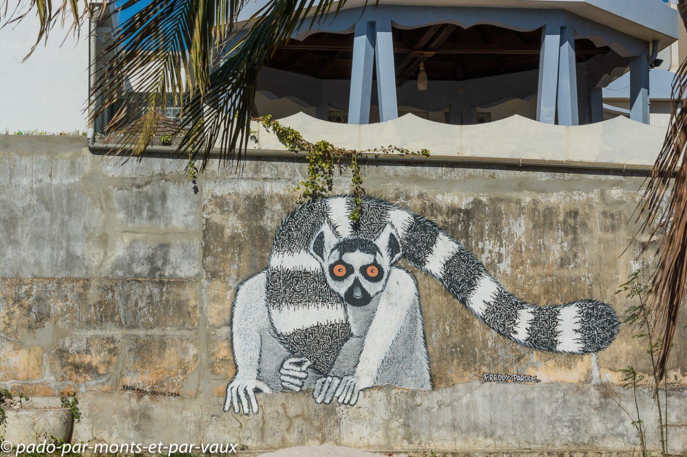 Street art Diego Suarez
