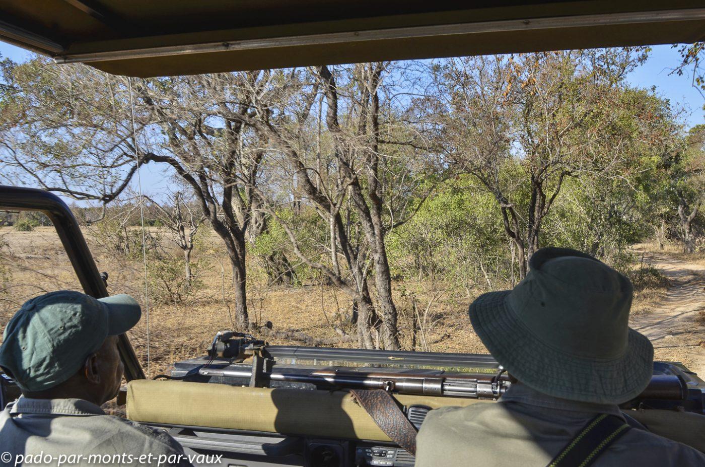Rhino walking trails