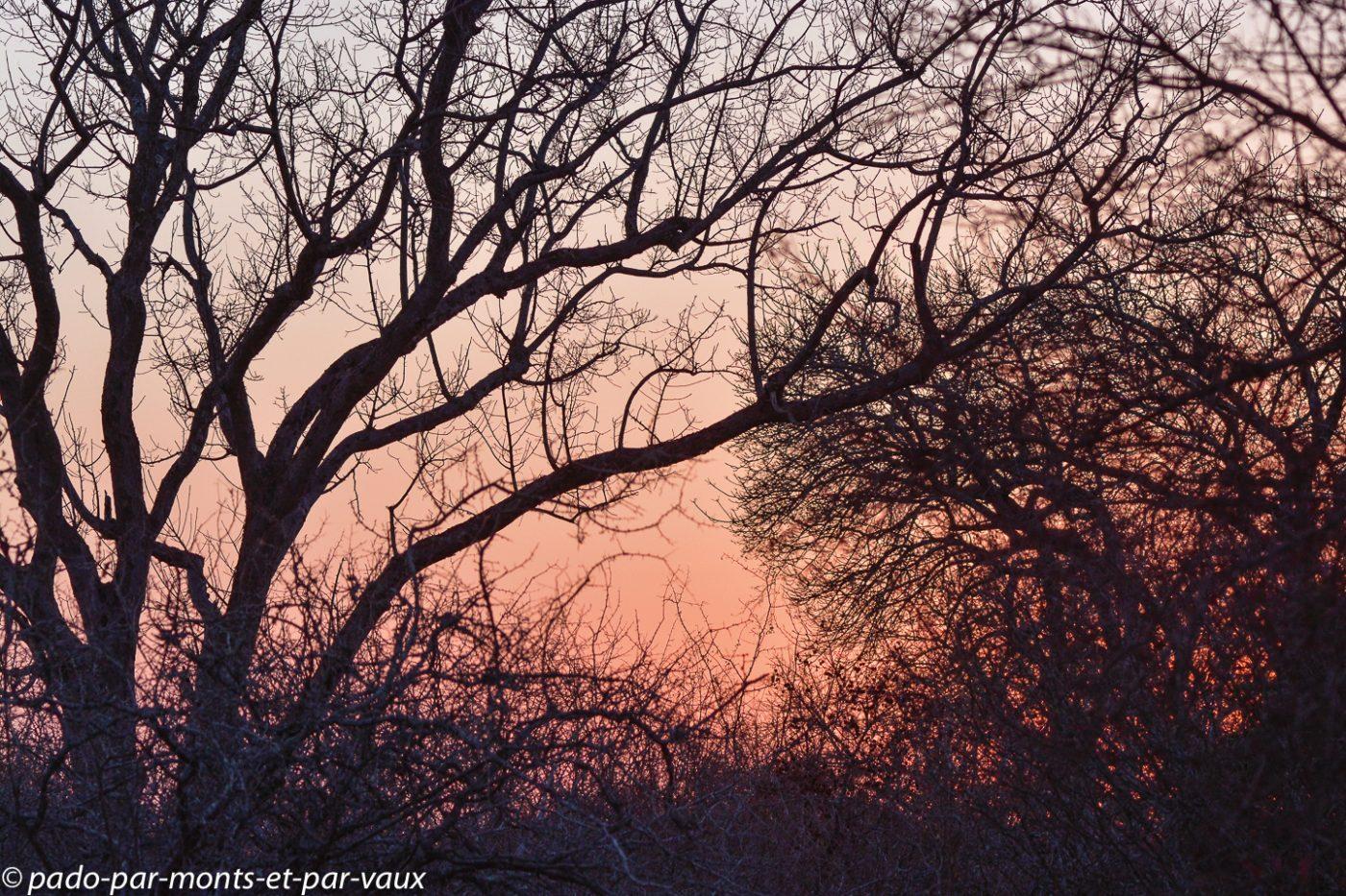 coucher de soleil Kruger