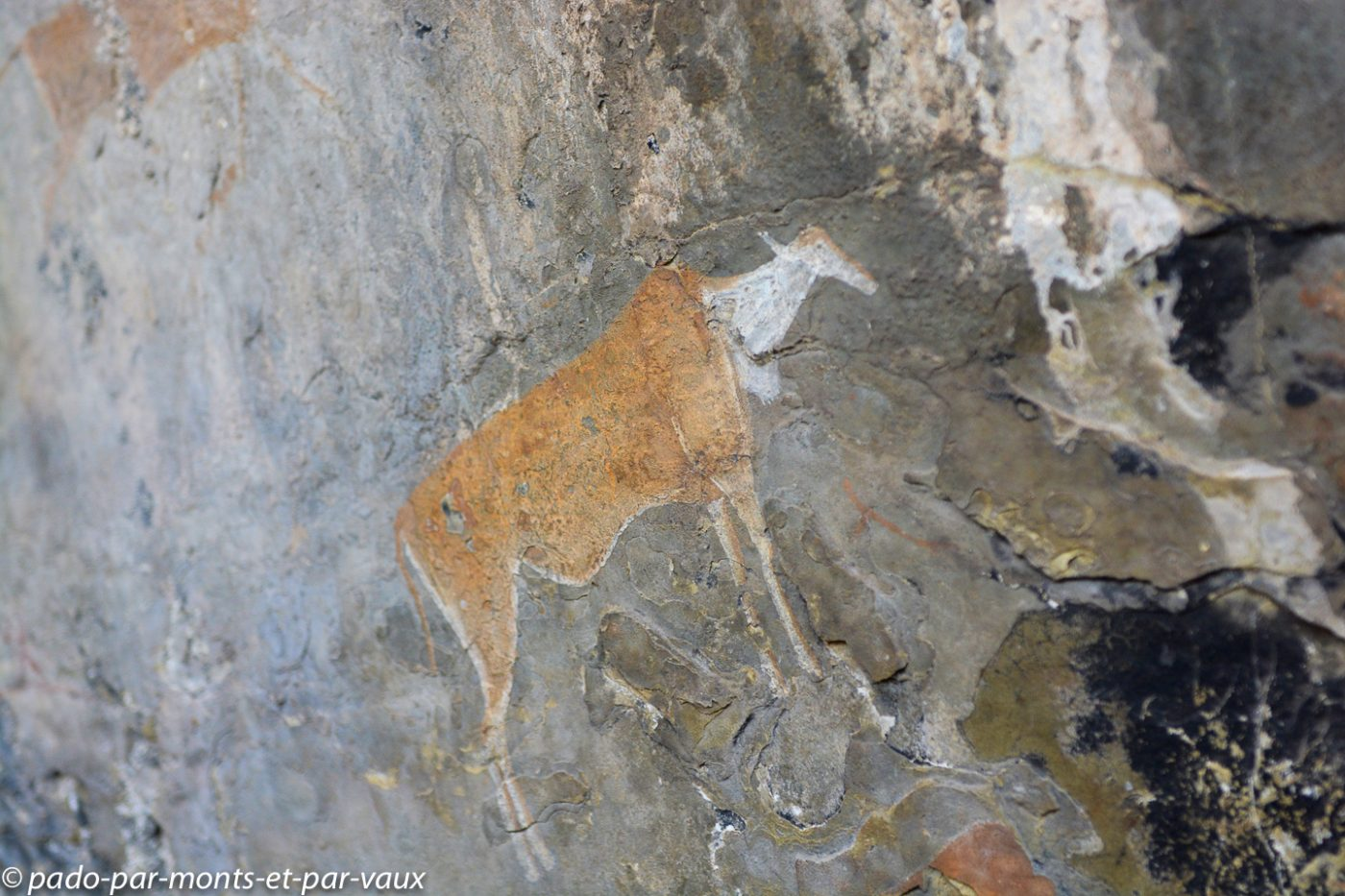 Drakensberg - peinture San