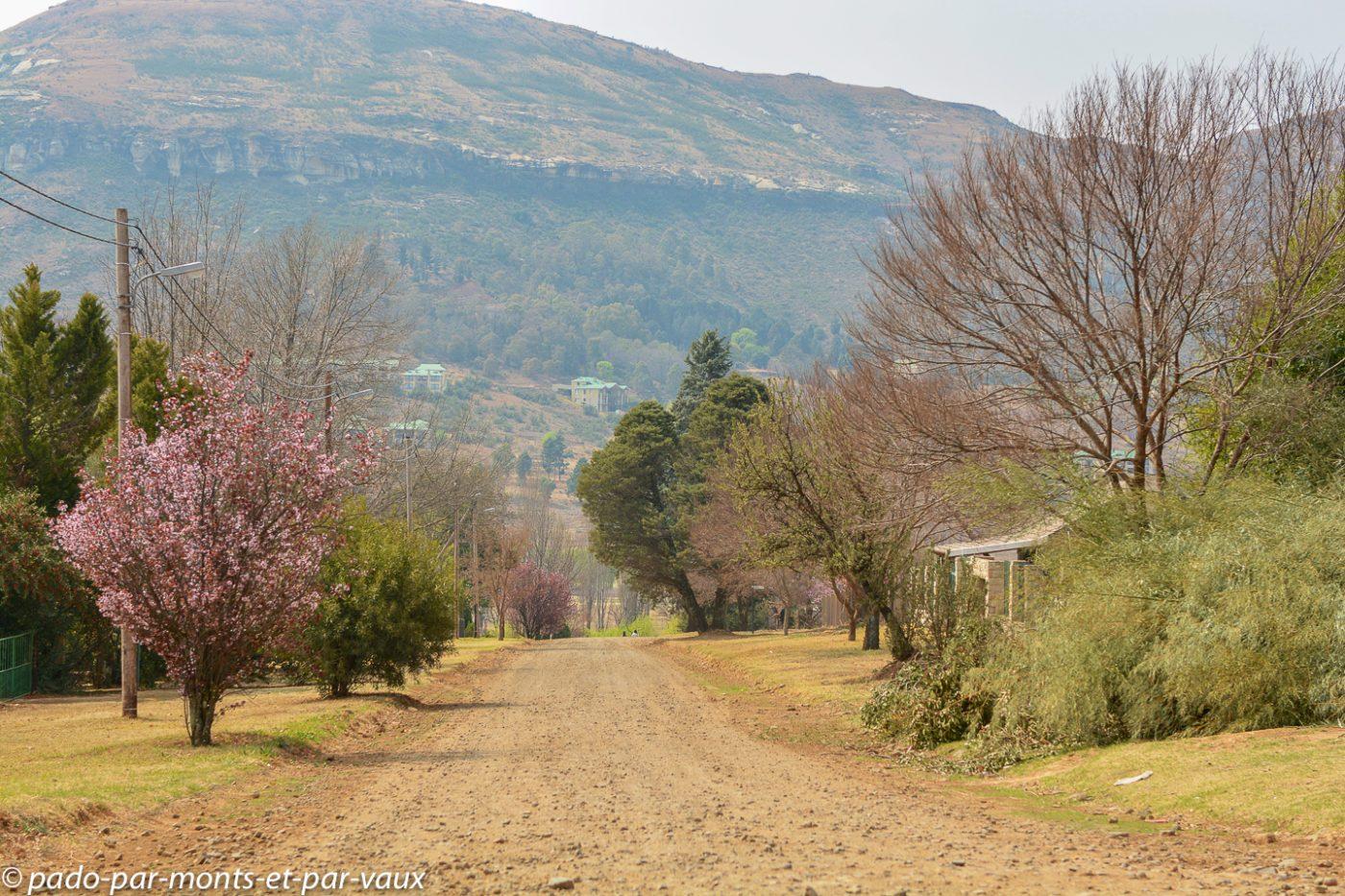 Afrique du Sud - Clarens