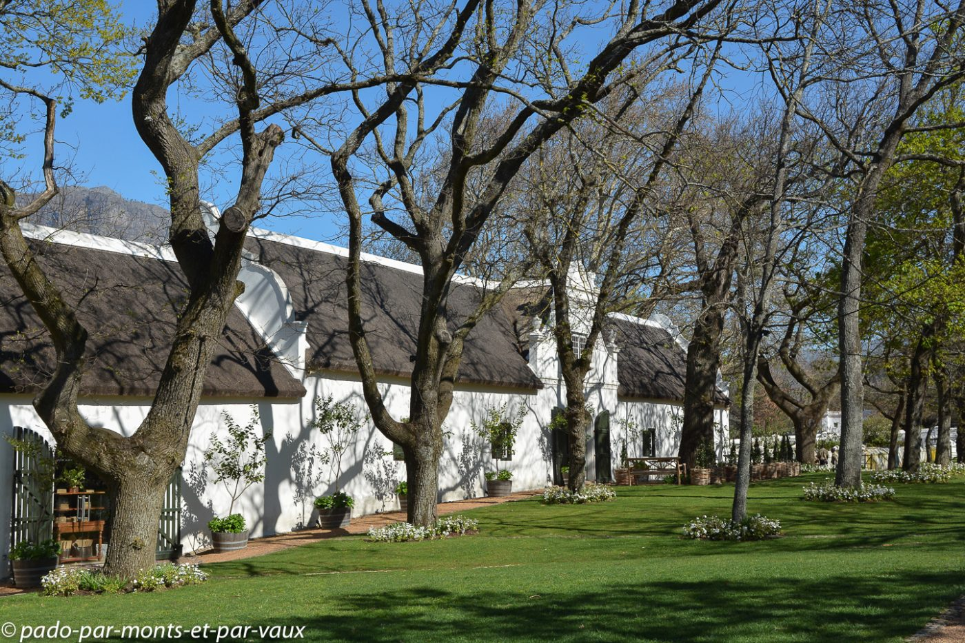 Boschendal Manor