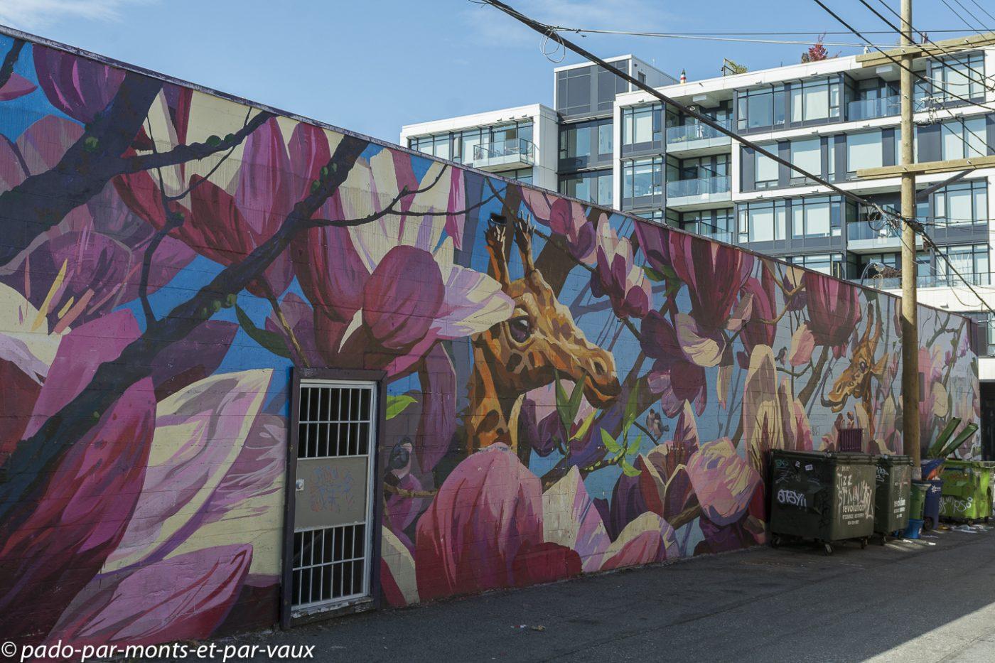 Street art Vancouver Mount Pleasant 2018