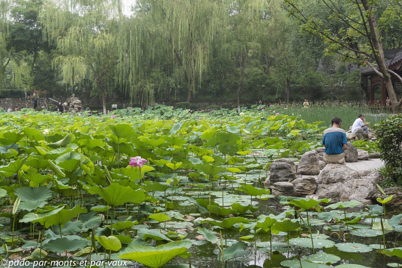 Xian - parc public