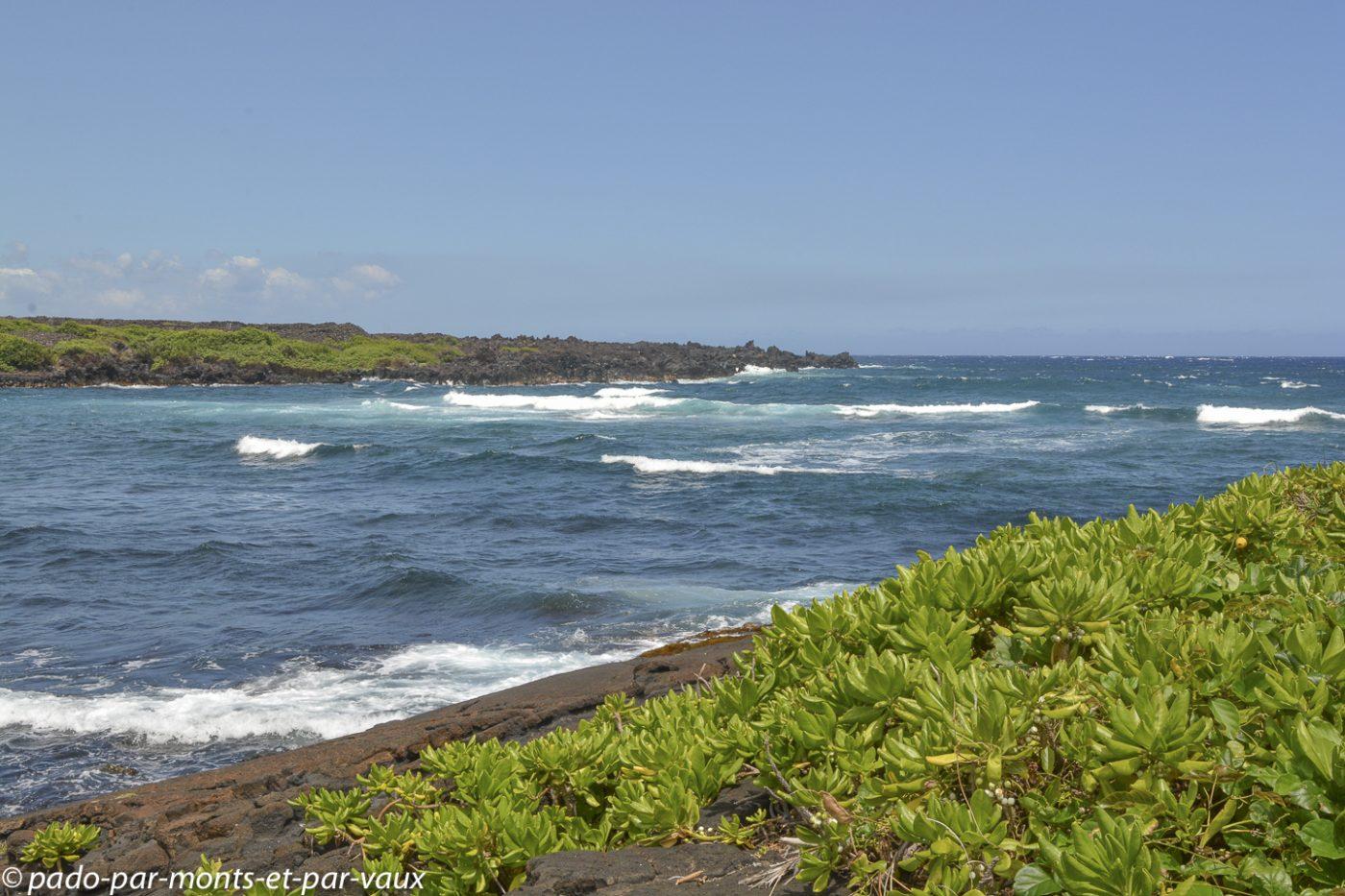 Big Island - Punalu'u beach