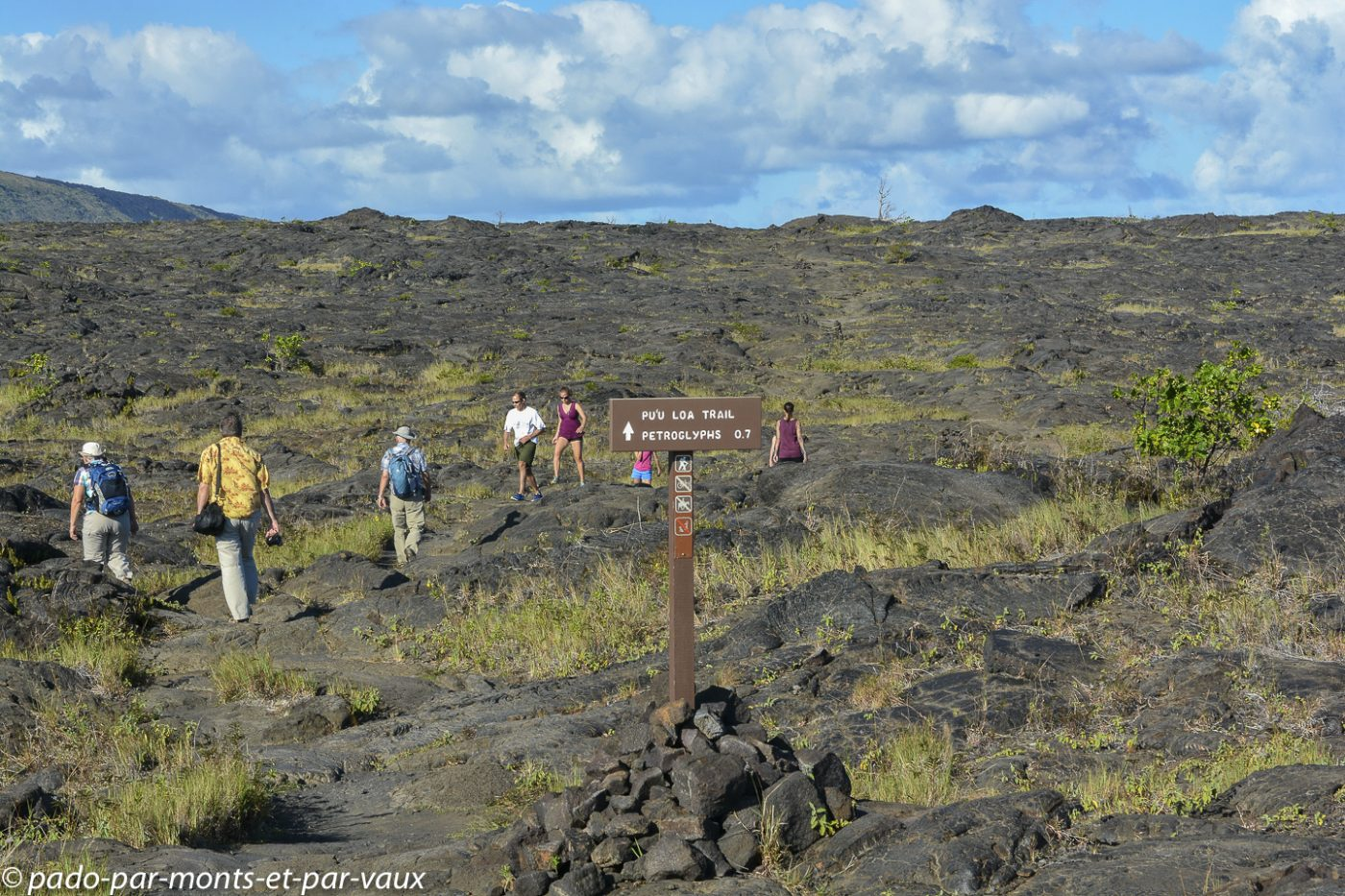 Big Island - Chain of craters road