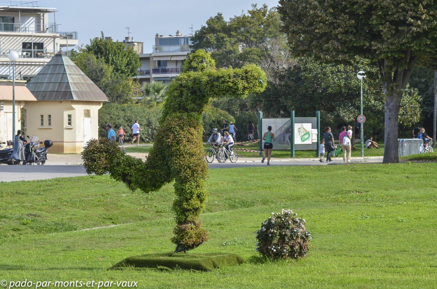 Parc Borely - Marseille - Zelkova