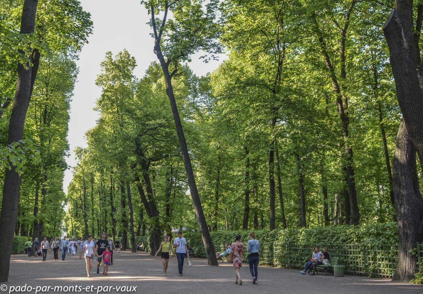 St Pétersbourg  - jardins du champ de mars