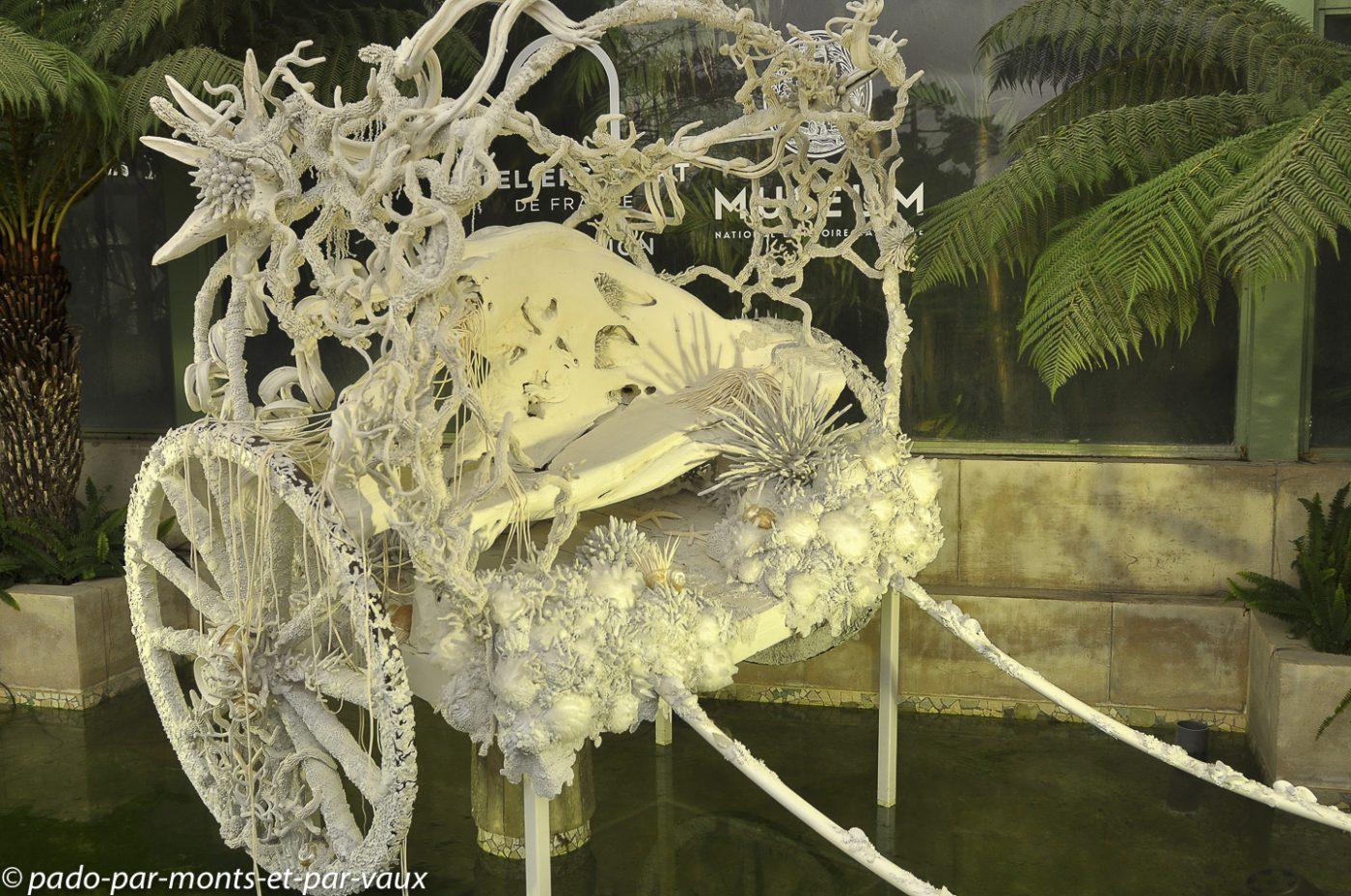 Jardin des plantes - Paris - exposition Tzuri Gueta