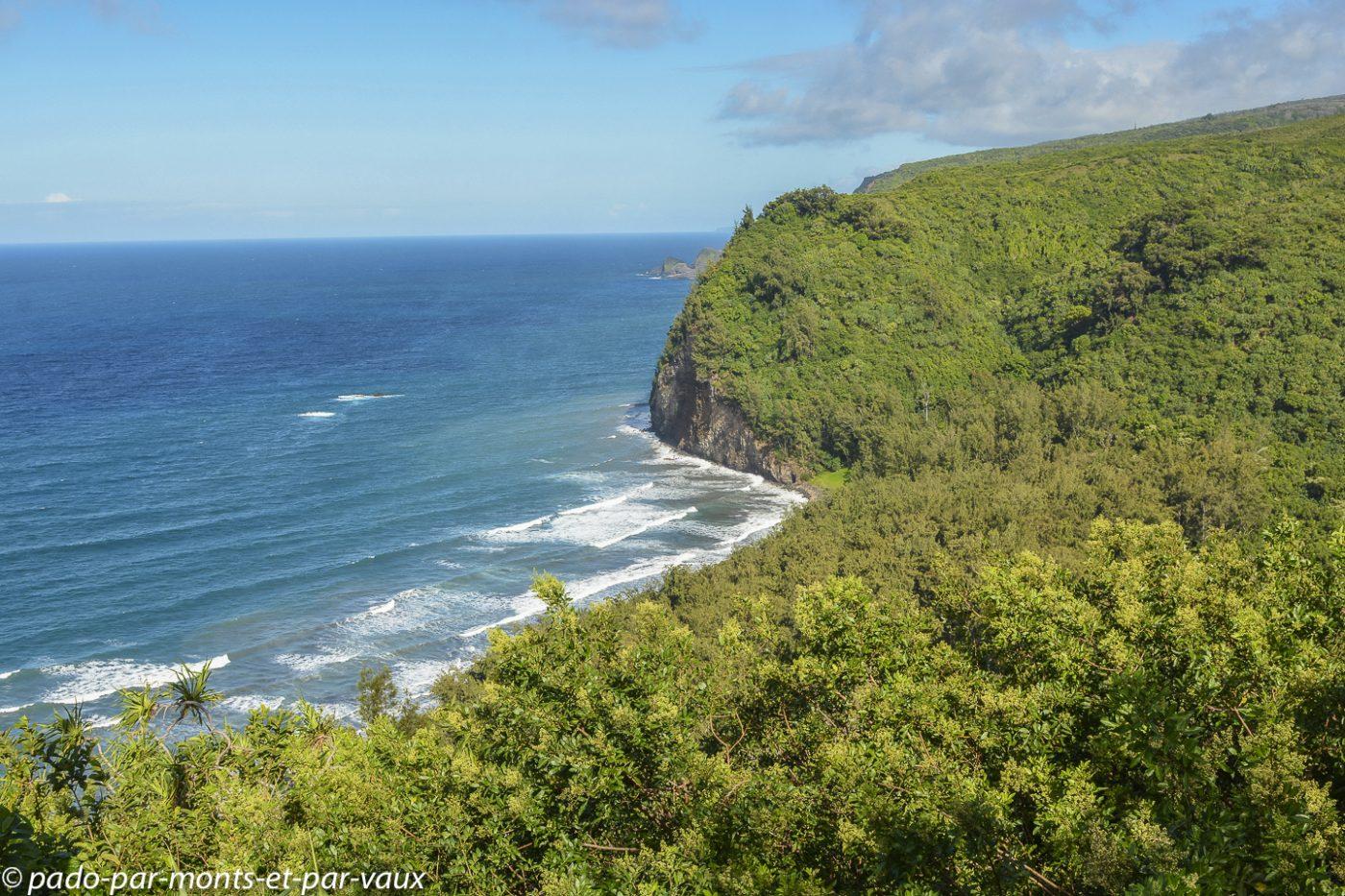 Big Island -   Pololu Valley lookout