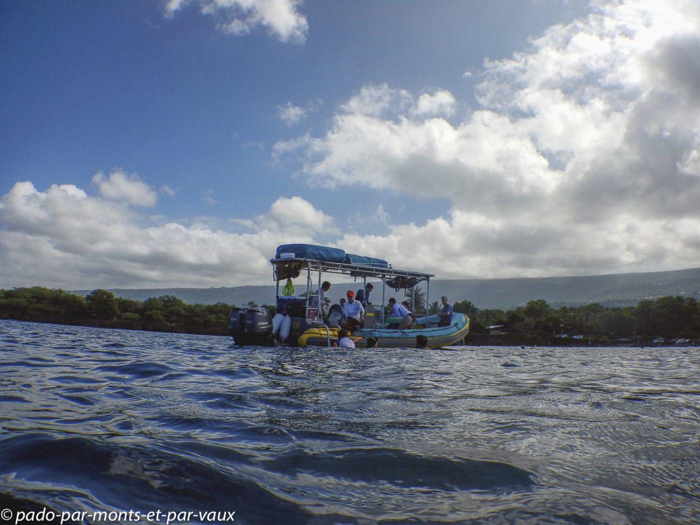 Big Island - Seaquest - sortie en mer