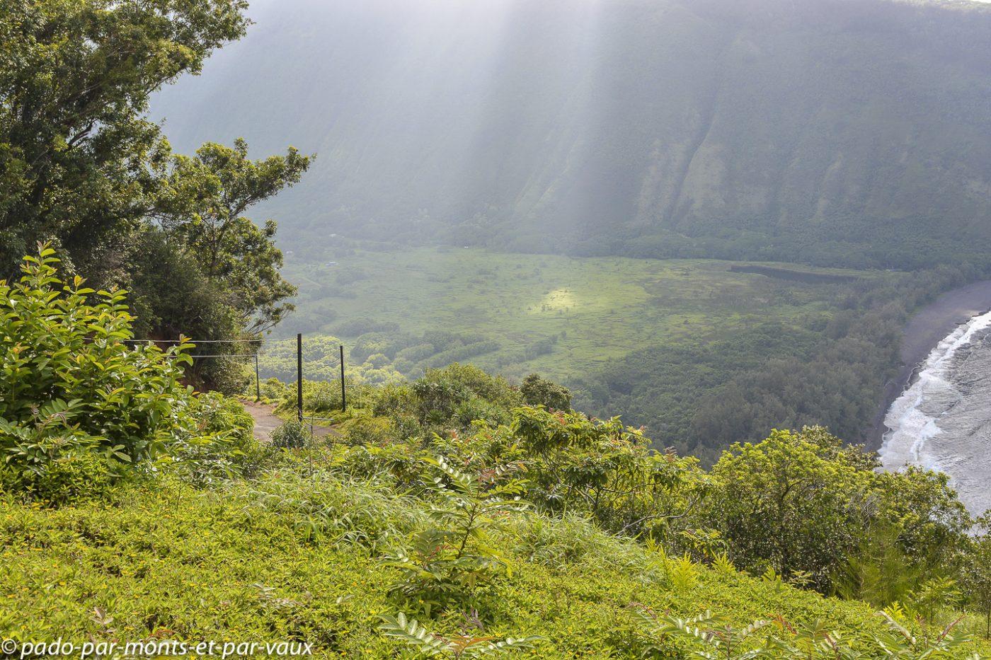 Big Island -  Waipio lookout