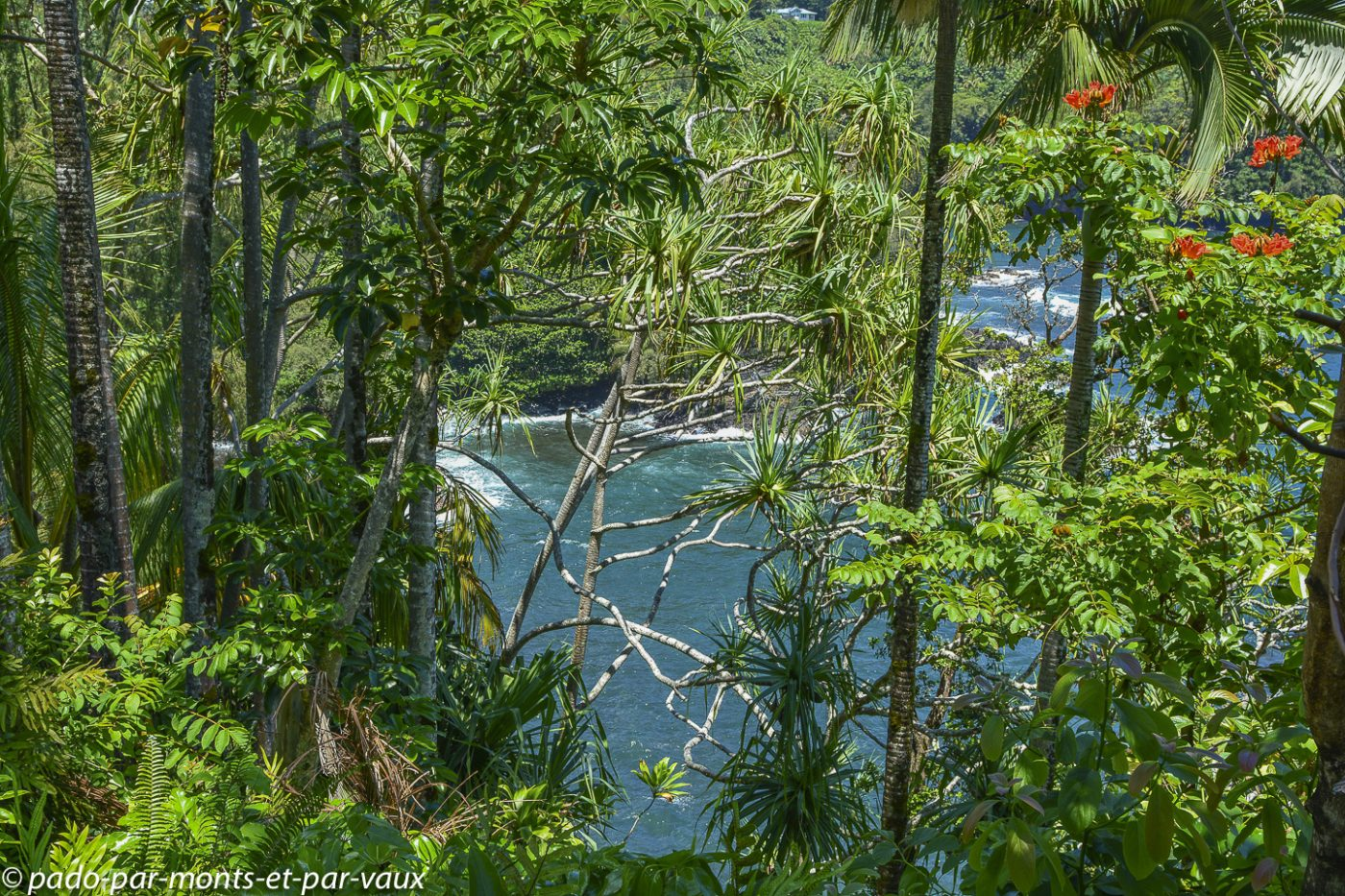 Big Island -  Pepe'ekeo scenic drive