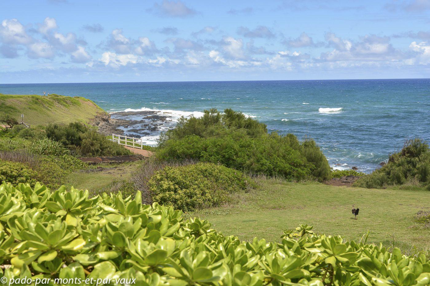 2014 - Kauai