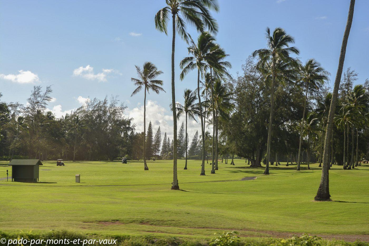 Kauai - golf