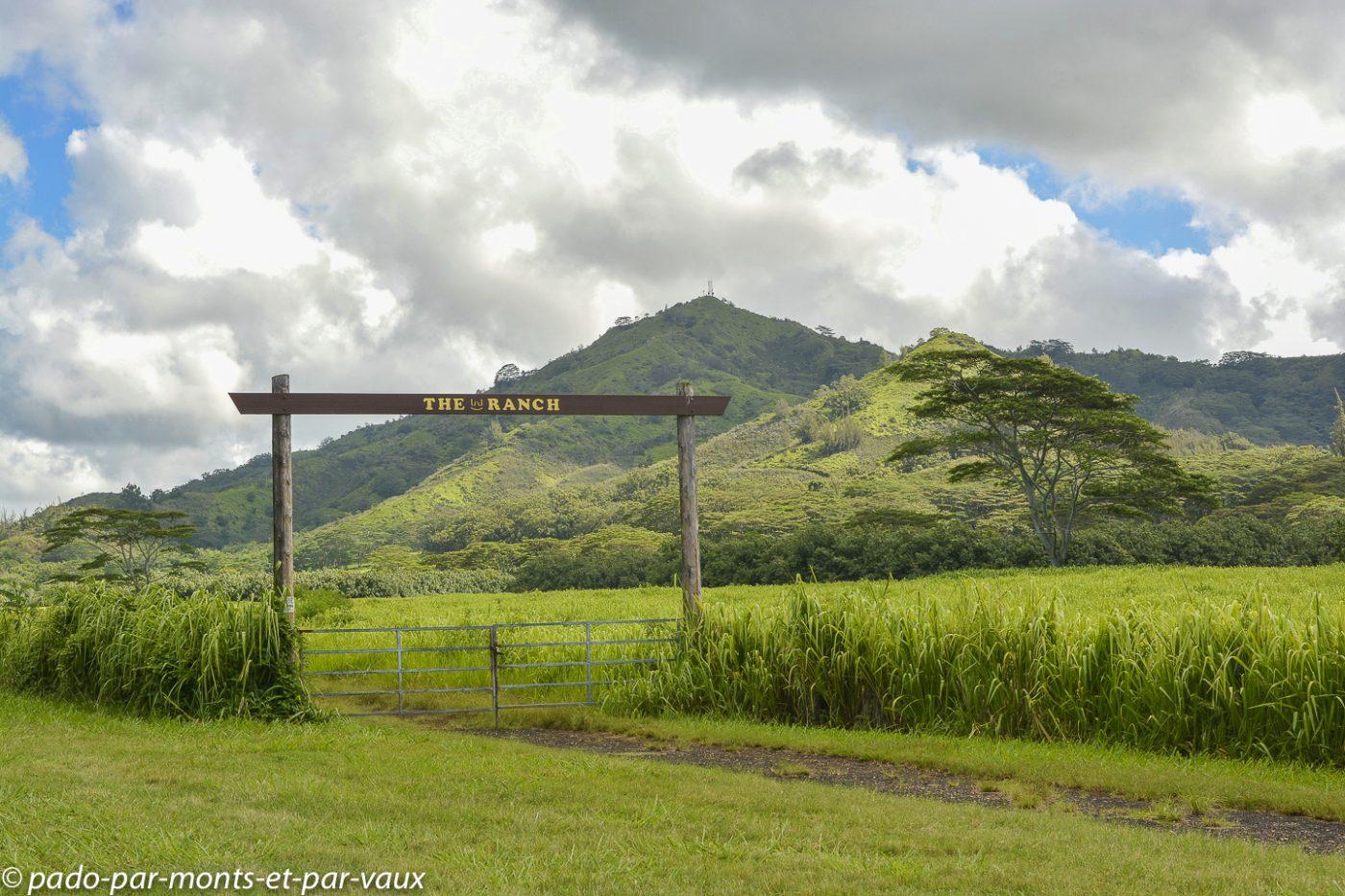 Kauai - route du sud