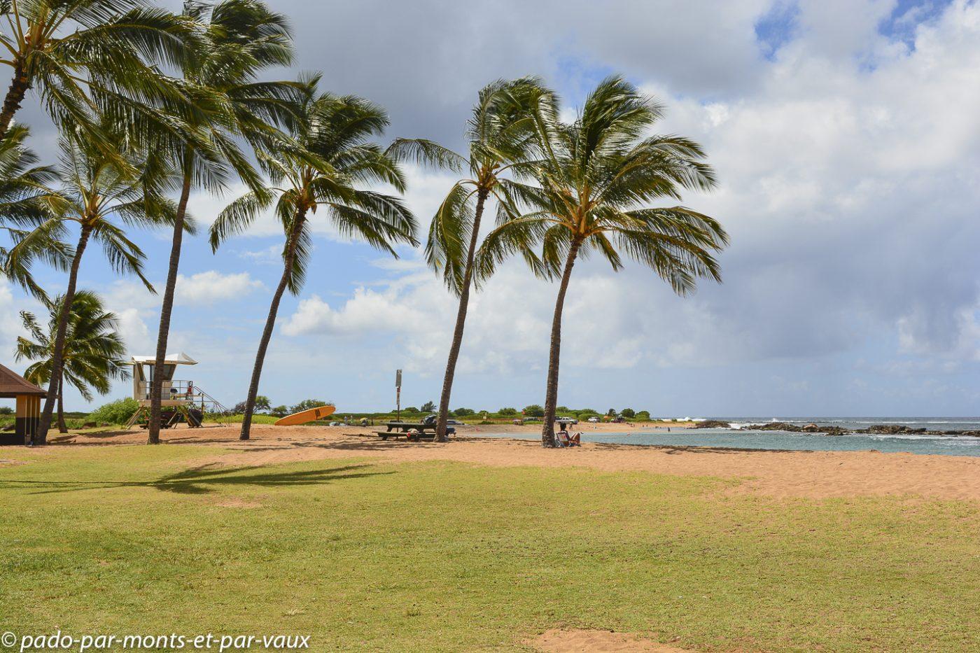 Kauai -  Salt pond beach park