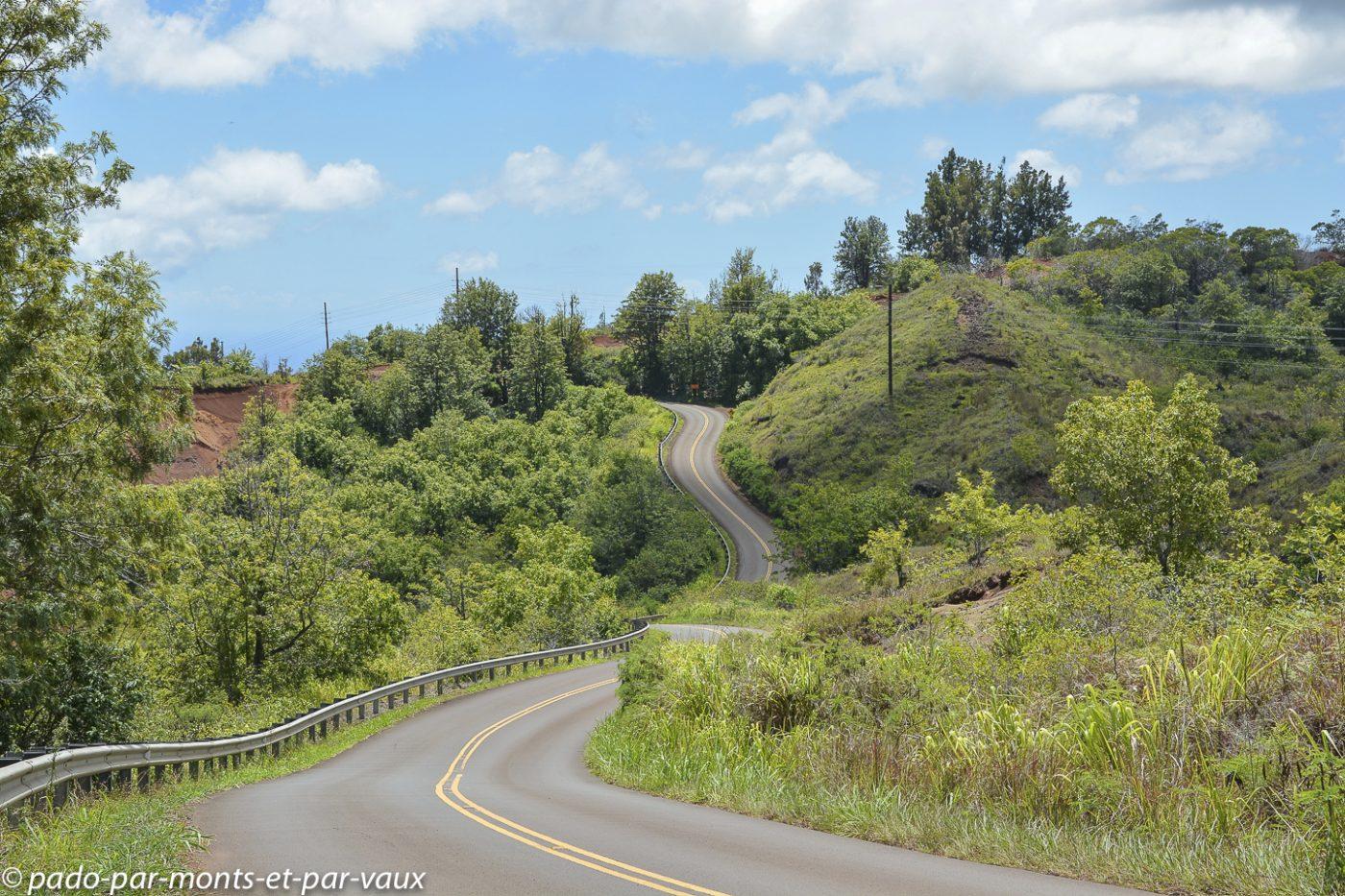 Kauai - Waimea canyon drive