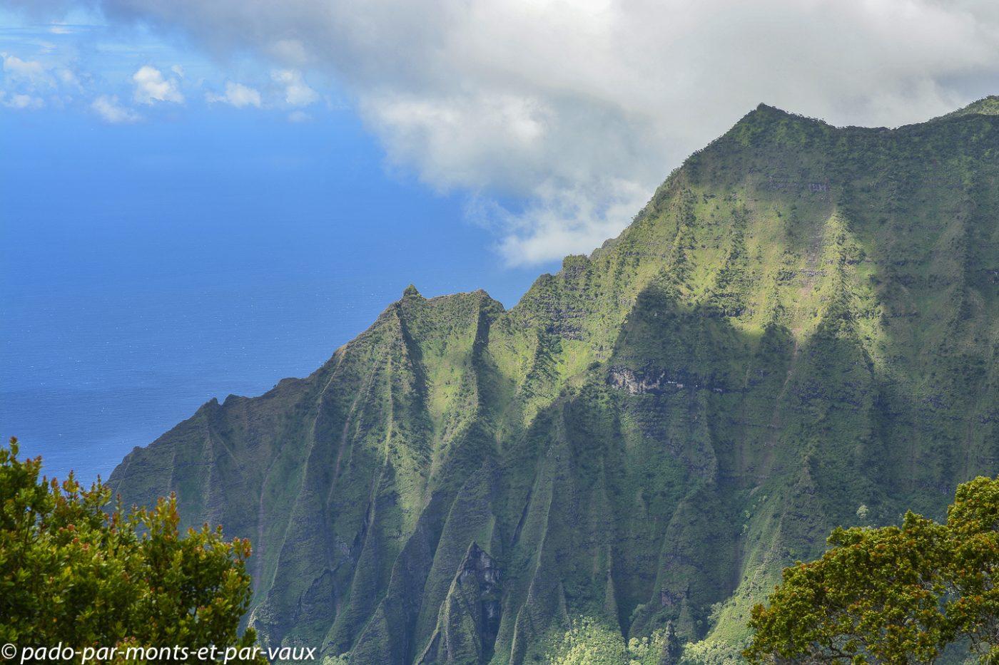 Kauai -  Kokee state park - Kalalau lookout