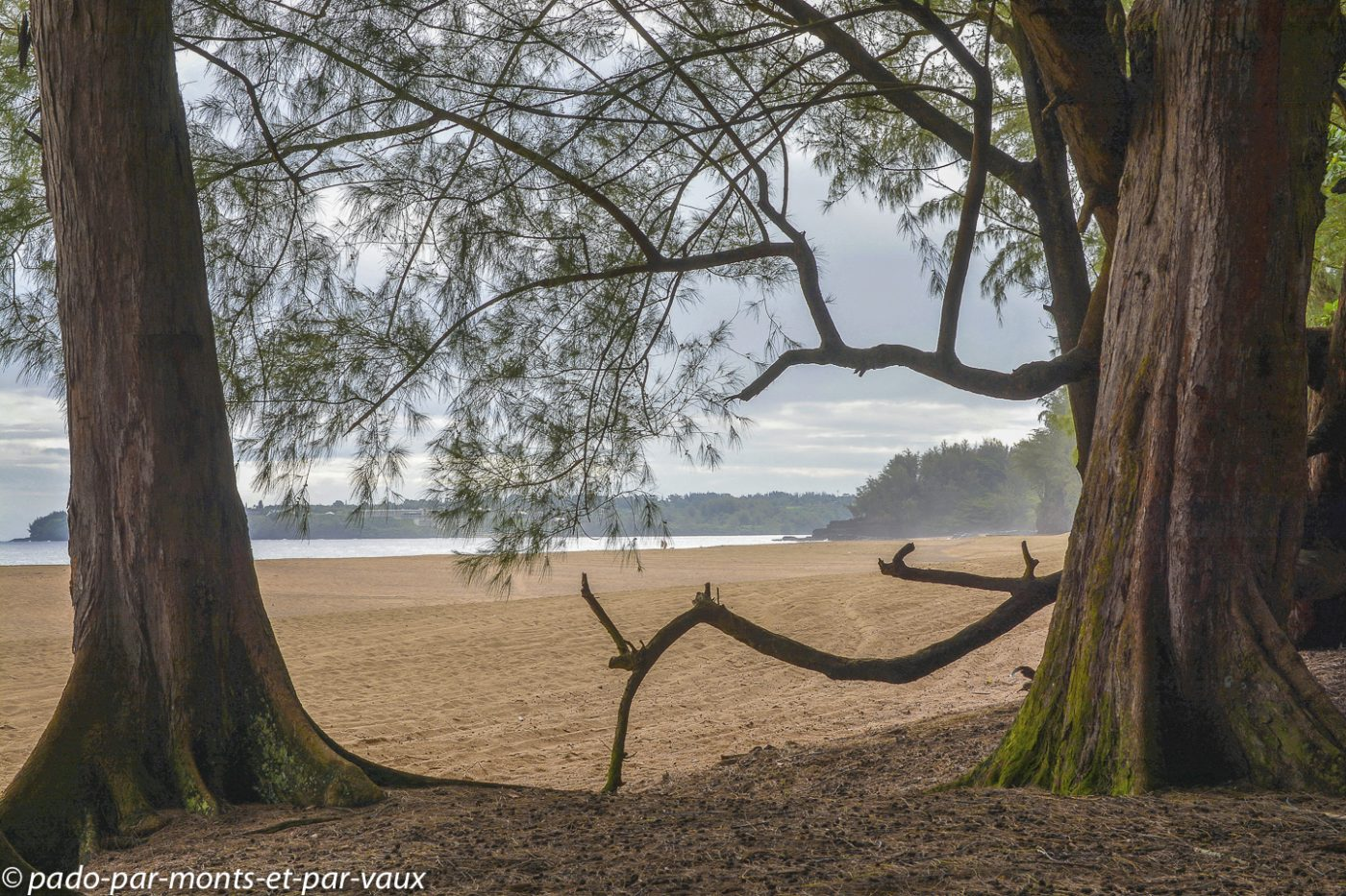 Kauai - route du Nord