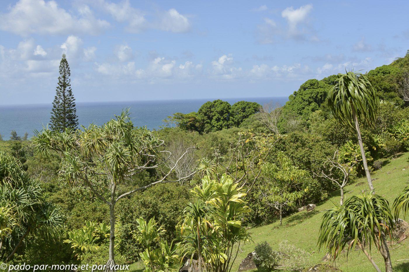 Kauai - Limahuli garden