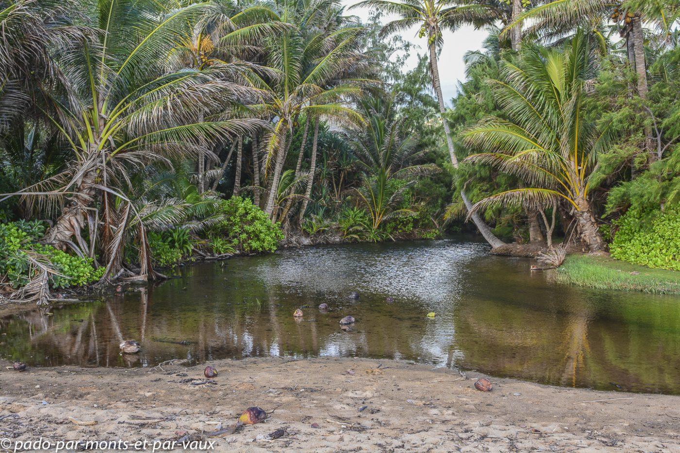 Kauai - promenade Anahola