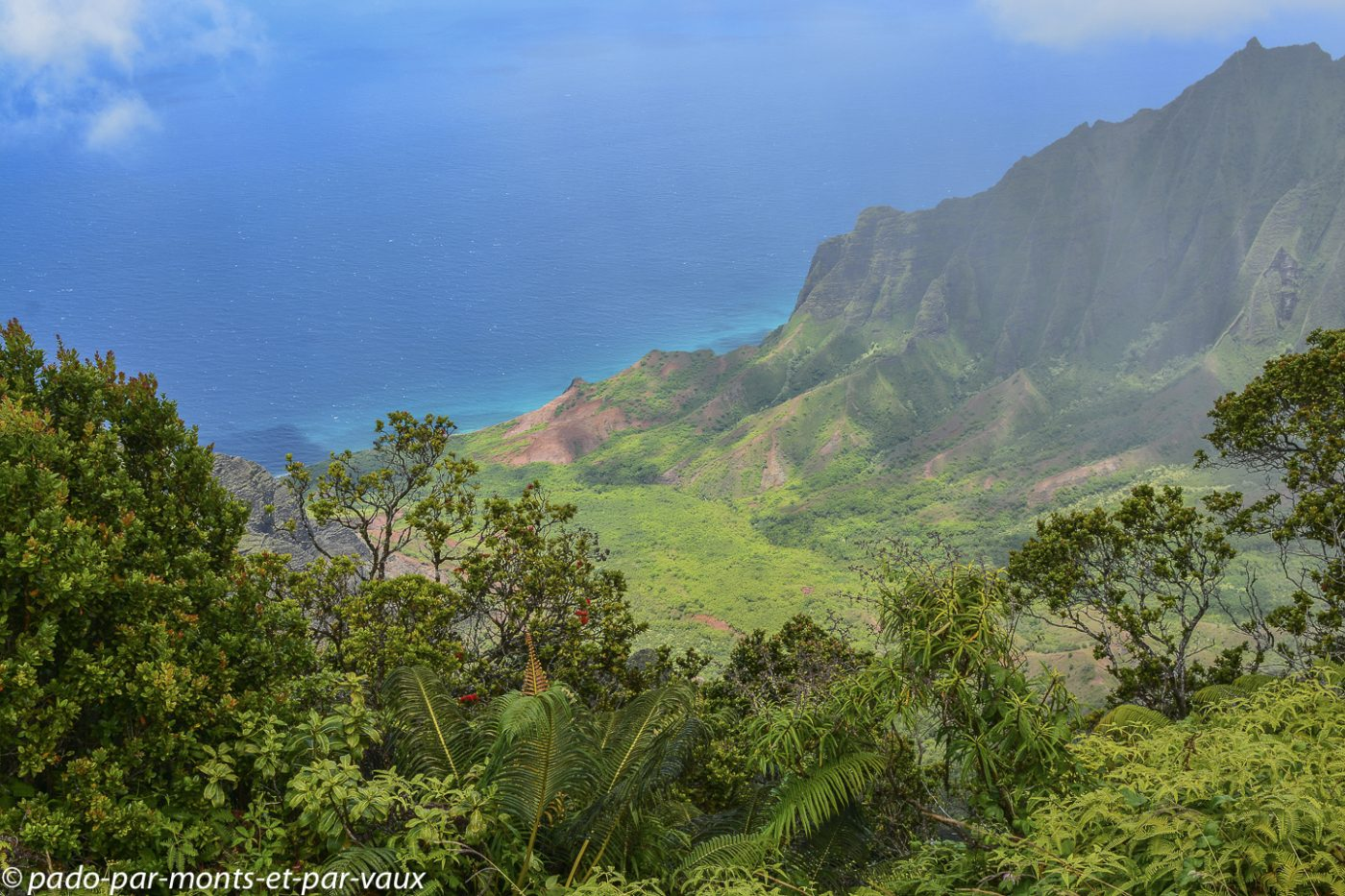 Kauai - Napali coast depuis le Kalalau lookout