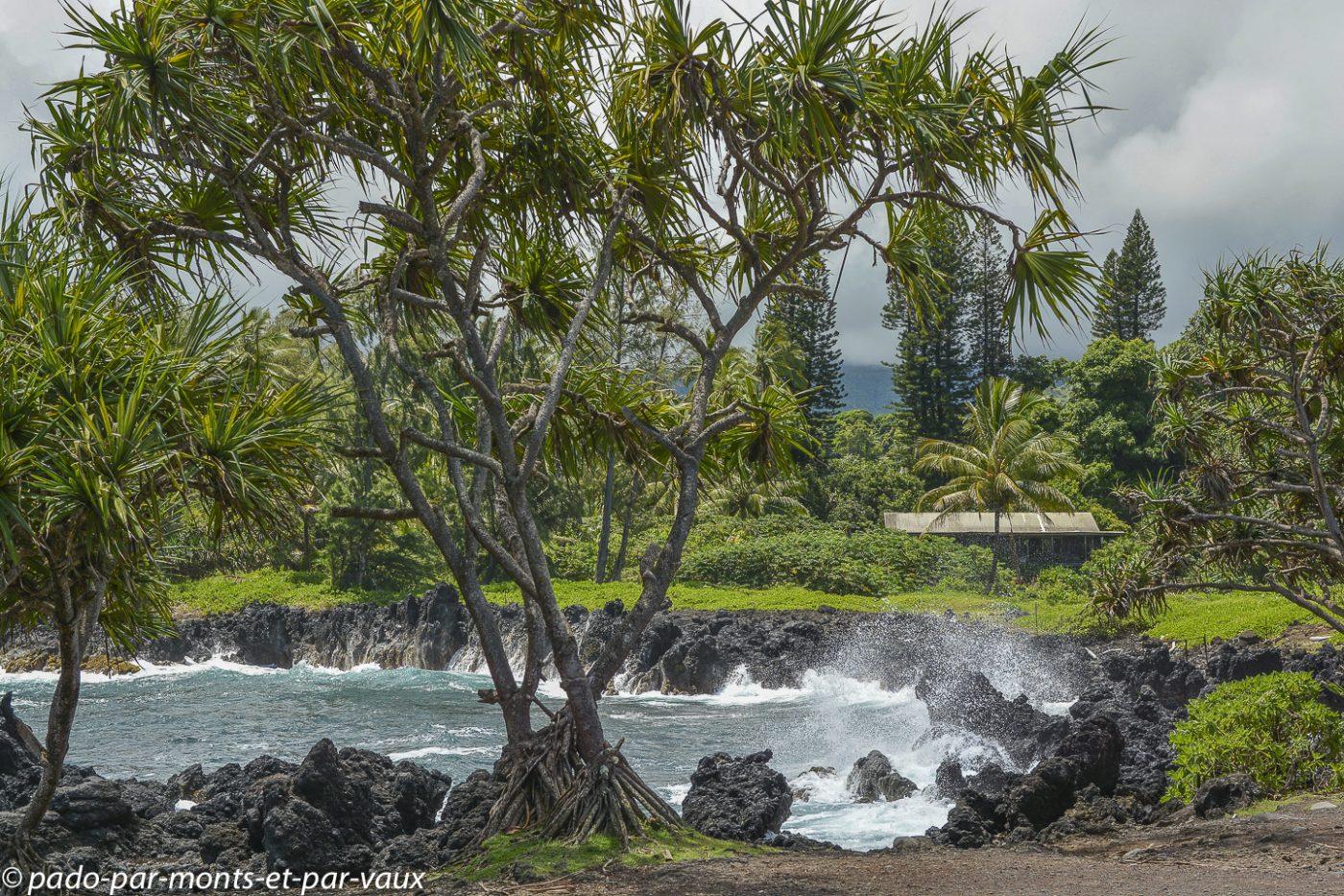 Maui - Route de Hana - Keanae peninsula